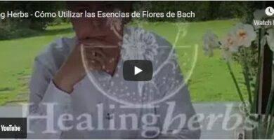 Flores de Bach La Botika