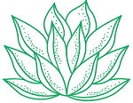 www.labotika.es
